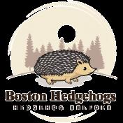 BOSTON HEDGEHOGS